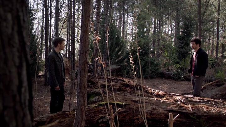 The.Vampire.Diaries.S04E17.HDTV.x264-LOL.mp4_002293165